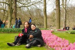 Photo of Amsterdam Keukenhof Gardens and Tulip Fields Tour from Amsterdam Realxing Among Hyacinths