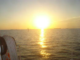 Photo of Key West Tall Ship Sunset Cruise in Key West Sunset on the Gulf
