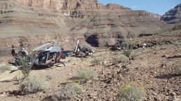 Photo of Las Vegas Grand Canyon Helicopter Tour from Las Vegas Landing Site