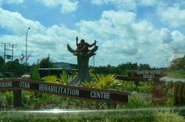 Roundabout leading to Sepilok Oragutan Centre., Michael P - June 2008