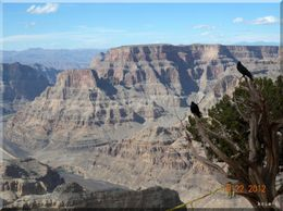 Photo of Las Vegas Grand Canyon and Hoover Dam Day Trip from Las Vegas with Optional Skywalk vgrc01