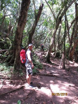 Hike through amazing Hawaiian wilderness, Gavin T - May 2013