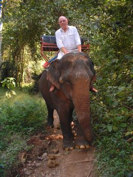 What a beautiful and placid creature. No not me, I mean the elephant!, Kerry B - December 2007