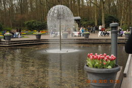 Photo of Amsterdam Keukenhof Gardens and Tulip Fields Tour from Amsterdam Fountain