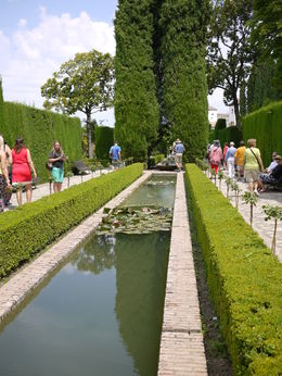 Skip the Line: Alhambra and Generalife Gardens Half-Day Tour, Laura All Over - August 2014