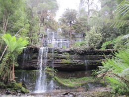Photo of Hobart Mt Field National Park and Russell Falls from Hobart Russell Falls