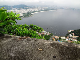 Sugar Loaf view. , Peter P - March 2013
