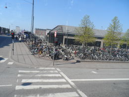 Could not believe how many people rode there bikes to work in the morning. Amazing. , Alfred L - June 2013