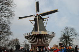 Photo of Amsterdam Keukenhof Gardens and Tulip Fields Tour from Amsterdam Dutch Windmill