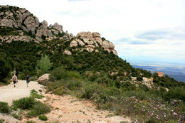 Take the Sant Joan funicular to the top and hike back down to the monastery , Saysha - June 2013