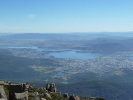 Photo of Hobart Mount Wellington Tour from Hobart P1010709