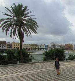 Viewing the Torre del Oro along the river before walking short distance to the cathedral--don't miss it! , Sally B - November 2013
