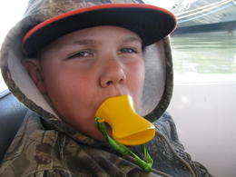 Photo of San Francisco San Francisco Duck Tour Duckling Garret