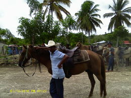 One of the guides on our horseback riding trip. , Chris L - September 2015