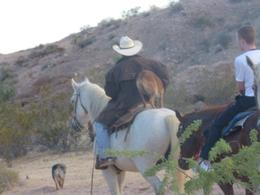 Photo of Las Vegas Wild West Sunset Horseback Ride with Dinner dog on horse