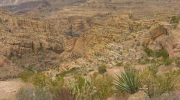 Photo of Phoenix Apache Trail Day Tour from Phoenix Salt Water Creek Canyon