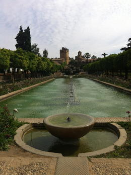In the gardens at the Alcazar , Maahir P - May 2014