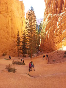 Photo of Las Vegas 3-Day National Parks Camping Tour: Grand Canyon, Zion, Bryce Canyon and Monument Valley from Las Vegas Bryce Canyon