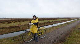Photo of Amsterdam Dutch Villages and Countryside Bike Tour from Amsterdam Countryside bike tour