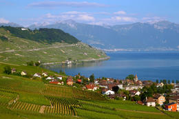 Lavaux Vineyards on Lake Geneva, Gruyeres-Montreux day trip - November 2011