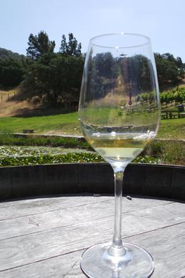 Photo of San Francisco Napa and Sonoma Wine Country Tour Wine tasting