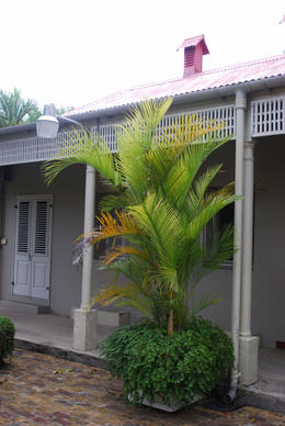 Photo of   Barbados Museum Courtyard