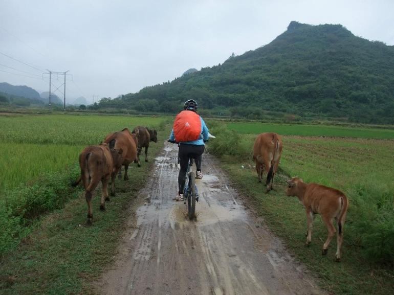 Biking in Yangshuo - Guilin