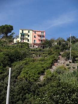 Photo of Florence Cinque Terre Hiking Day Trip from Florence Escada