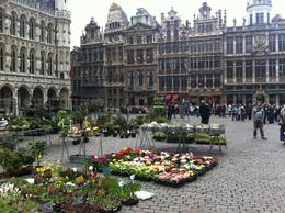 Photo of Brussels The Brussels Card Spring poke