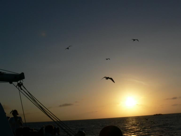 Beauty in nature- Aruba Sunset - Aruba