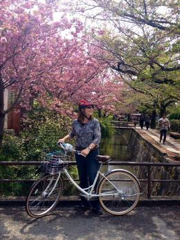 Photo of Kyoto Kyoto Small-Group Bike Tour Cherry Blossoms