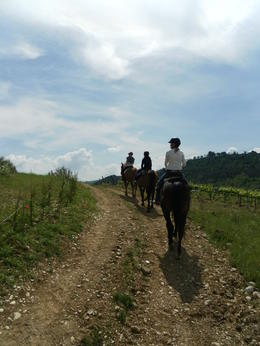 Photo of Florence Horse Riding in Chianti Day Trip from Florence Riding through the hills....