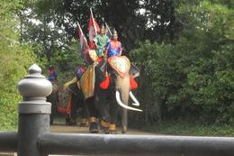 Foto de Bangcoc Sampran Elephant Ground and Zoo Tour from Bangkok Start of Show