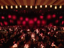 Photo of Paris Viator VIP: Moulin Rouge Show with Exclusive VIP Seating and 3-Course Dinner The Main Seating Area