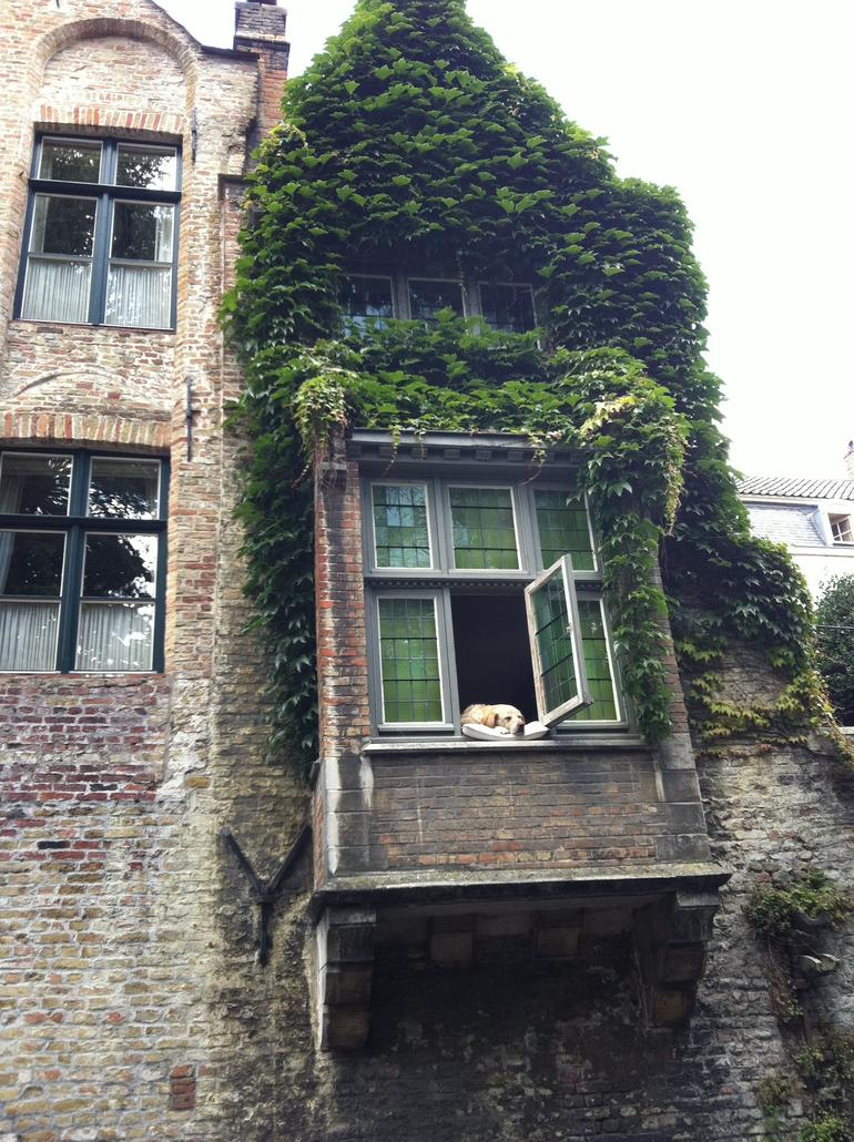 Wiked_iPhone_070311 215 - Brussels