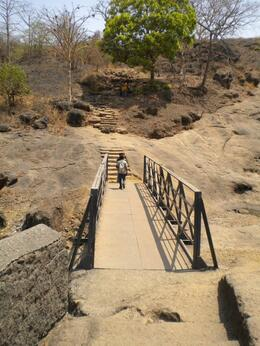 bridge going back to Forrest seen from uphill , EXPLORE GLOBE - March 2012