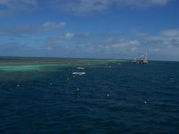 Photo of The Whitsundays & Hamilton Island Great Barrier Reef Day Cruise to Reefworld Great Barrier Reef