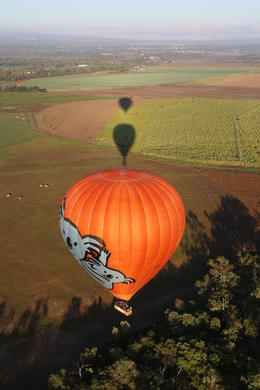 Photo of Cairns & the Tropical North Hot Air Ballooning Tour from Cairns Hot Air Ballooning Cairns