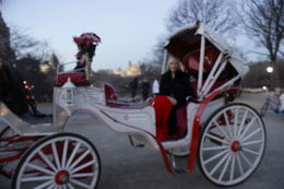 Photo of New York City Private Horse and Carriage Ride in Central Park my carriage ride
