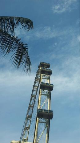 Photo of Singapore Singapore City Pass: Singapore Flyer, Duck Tour and Food Trail Singapore Flyer