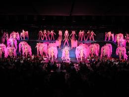 Photo of Paris Viator VIP: Moulin Rouge Show with Exclusive VIP Seating and 3-Course Dinner The Show!