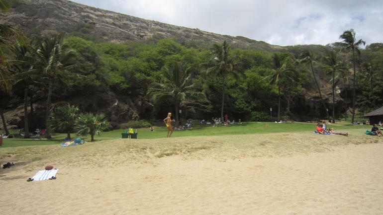 Hanauma Bay green - Oahu