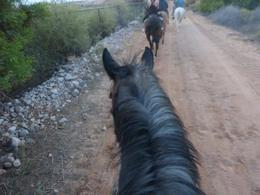 Photo of Las Vegas Wild West Sunset Horseback Ride with Dinner my horse