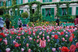 Photo of Paris Versailles and Giverny Day Trip Spring in Monet's garden