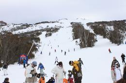 Photo of Sydney Thredbo or Perisher Blue Weekend Snow Trip Up at Merritts