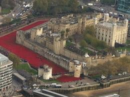 Thousands of Poppies fill the moat at The Tower in remembrance of those whose sacrifices made possible our many freedoms. May they rest in peace. , Blair Q - November 2014