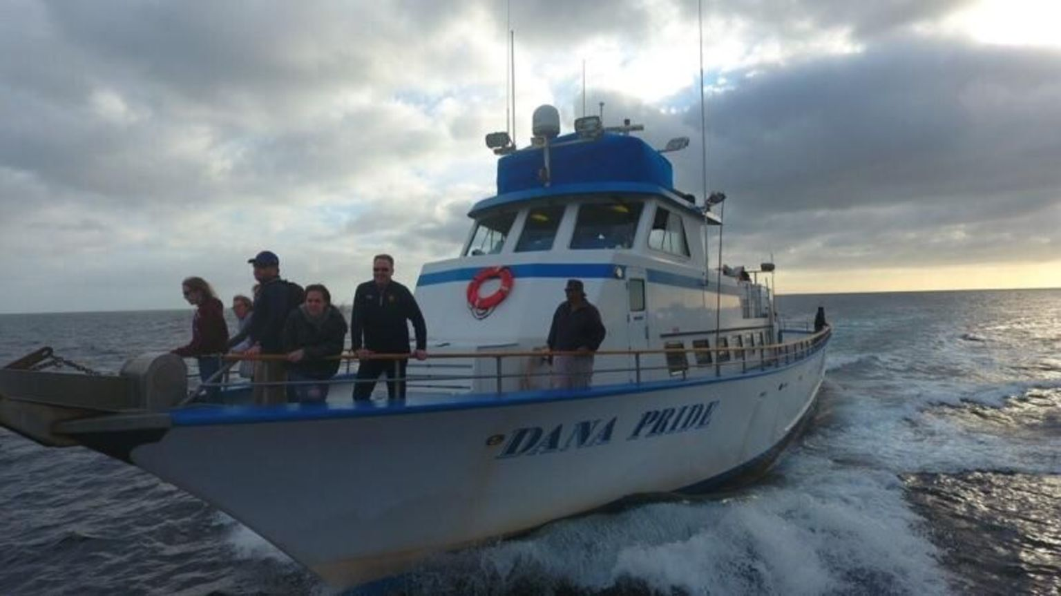 Whale Watching Excursion in Dana Point