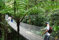 Photo of Arenal Volcano National Park Arenal Hanging Bridges