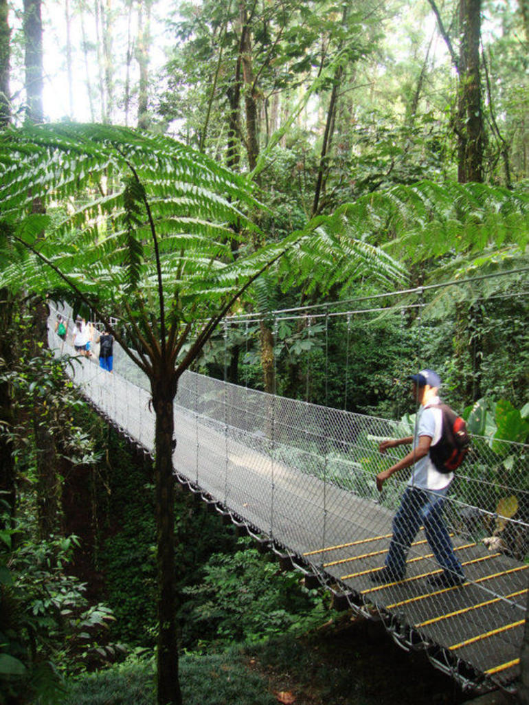 Arenal Hanging Bridges - Arenal Volcano National Park