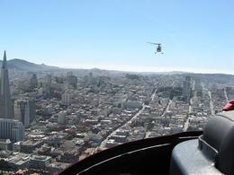 Photo of San Francisco San Francisco Vista Helicopter Tour Birds